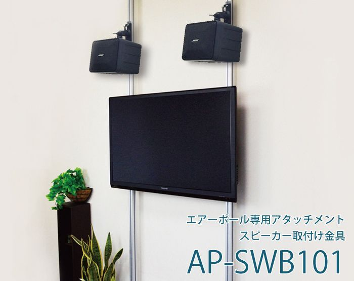 AP-SWB101